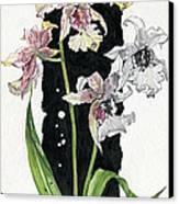 Flower Orchid 06 Elena Yakubovich Canvas Print by Elena Yakubovich