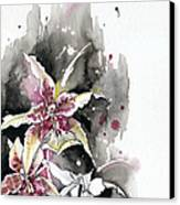 Flower Orchid 12 Elena Yakubovich Canvas Print by Elena Yakubovich