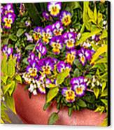 Flower - Pansy - Purple Posies  Canvas Print by Mike Savad