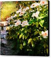 Flower - Rose - By A Wall  Canvas Print by Mike Savad