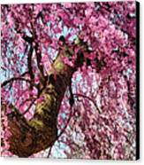 Flower - Sakura - Finally It's Spring Canvas Print by Mike Savad