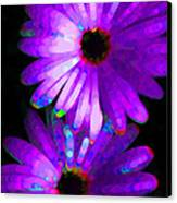Flower Study 6 - Vibrant Purple By Sharon Cummings Canvas Print by Sharon Cummings