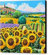 Flowered Garden Canvas Print by Jean-Marc Janiaczyk