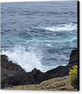 Flowers And Crashing Waves Canvas Print