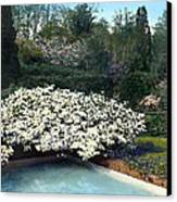 Flowers And Pool Canvas Print