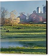 Foggy Farm Morning Canvas Print