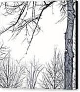 Foggy Morning Landscape - Fractalius 6 Canvas Print