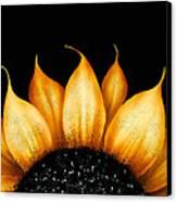 Folk Art Sunflower Canvas Print