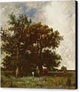 Fontainebleau Oak Canvas Print