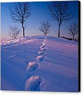 Footsteps Canvas Print by Cale Best