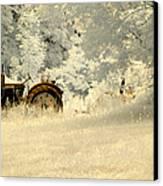 Forgotten Harvest Canvas Print