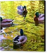 Four Ducks On Pond Canvas Print
