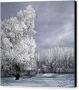 Four Seasons - Winter Canvas Print by Akos Kozari