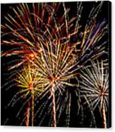 Fourth Of July Fireworks  Canvas Print by Saija  Lehtonen