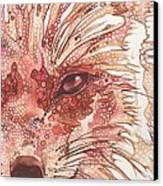 Fox Canvas Print by Tamara Phillips