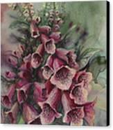 Foxgloves Canvas Print by Lynette Yencho