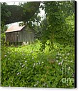 Framed In Green Canvas Print by Paul W Faust -  Impressions of Light