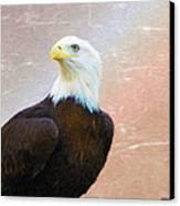 Freedom Flyer Canvas Print by Jeff Kolker
