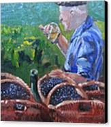 French Vineyard Worker Canvas Print by Kendal Greer