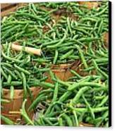 Fresh Green Beans In Baskets Canvas Print by Teri Virbickis