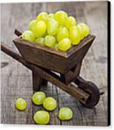 Fresh Green Grapes In A Wheelbarrow Canvas Print