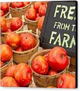 Fresh Tomatoes In Baskets At Farmers Market Canvas Print by Teri Virbickis