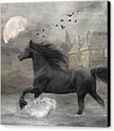 Friesian Fantasy Canvas Print by Fran J Scott