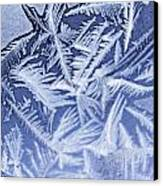 Frost In Blue Canvas Print