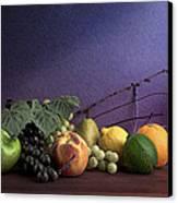 Fruit In Still Life Canvas Print by Tom Mc Nemar
