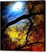 Full Crow Moon Canvas Print by Maria Scarfone