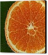 Fun With Fruit Orange Bubbles Canvas Print by Inspired Nature Photography Fine Art Photography