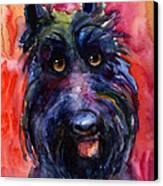 Funny Curious Scottish Terrier Dog Portrait Canvas Print by Svetlana Novikova