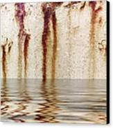 Funny Dance In Cold Water Canvas Print