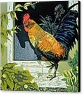 Gamecock And Hen Canvas Print
