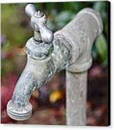 Garden Faucet Canvas Print by Cathie Tyler