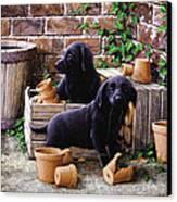 Gardeners Corner Canvas Print by John Silver