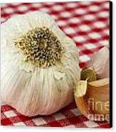 Garlic Canvas Print by Blink Images