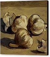 Garlic Canvas Print by Deborah Allison