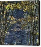 Gate Way To The Winters Forest Canvas Print by Donald Torgerson