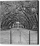 Gateway To The Old South Monochrome Canvas Print by Steve Harrington