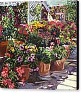 Gazebo Garden Canvas Print
