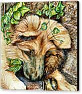 German Shepherd Pup Canvas Print by Joy Reese