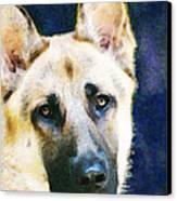 German Shepherd - Soul Canvas Print