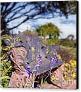 Gilcrease House Garden Flower Canvas Print