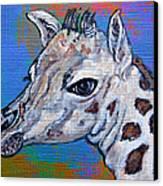 Giraffe - Baby Announcement Canvas Print by Ella Kaye Dickey