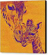 Giraffe Love Canvas Print by Jane Schnetlage