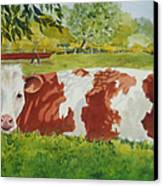 Give Me Moooore Shade Canvas Print by Mary Ellen Mueller Legault