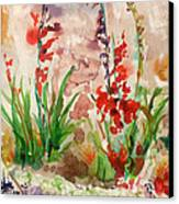 Gladioli Canvas Print