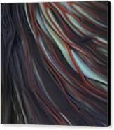Glass Veins Canvas Print by Kimberly Lyon