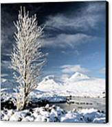 Glencoe Winter Landscape Canvas Print by Grant Glendinning
